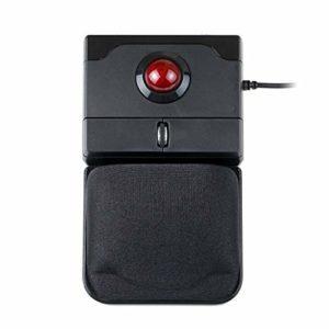 perixx PERIPRO-506 Souris avec USB Trackball Souris – 100x80x42 mm – 25mm Trackball Brillant – Repose Paume en Gel Détachable – Molette de déroulement