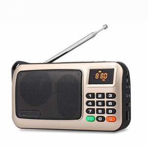 GDS Portable Radio FM, Lecteur de Musique MP3, Carte PC Haut-Parleur USB TF avec Affichage LED et Lampe de Poche Vérifiez,d'or